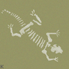 Lizard skeleton...
