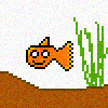 Atomas the goldfish