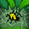 Yellow pider