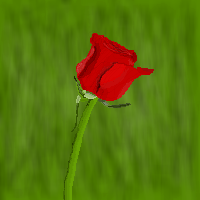 pixel art Rose by XAIDANX piq