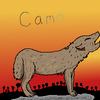 Camo (my OC and wolf character)