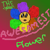 THE Awesomest Rainbow Flower in the world!!!!