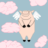 when pigs fly ~